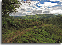 Costa Rica land for sale.jpg